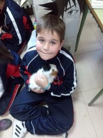 mascotas 14