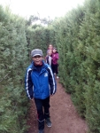 Bosque encantado11-2014 01