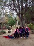 Bosque encantado11-2014 02