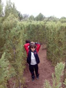 Bosque encantado11-2014 05
