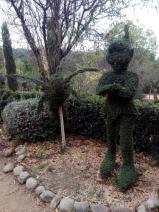 Bosque encantado11-2014 09