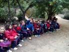 Bosque encantado11-2014 11