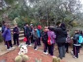 Bosque encantado11-2014 14