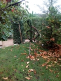 Bosque encantado11-2014 17