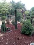 Bosque encantado11-2014 20