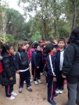 Bosque encantado11-2014 21