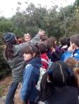 Bosque encantado11-2014 22