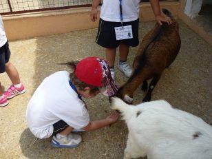 granja escuela 08