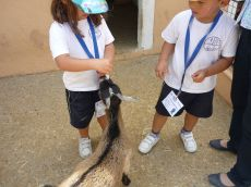 granja escuela 09